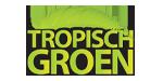 Tropisch groen